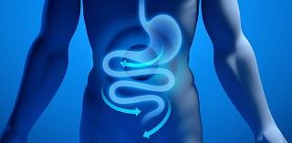 Curso de Nutrición y Gastroenterología desde el Abordaje Médico Nutricional