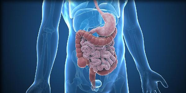 Curso de Nutrición y Gastroenterología en el adulto, desde el abordaje Nutricional